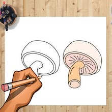 How to Draw Mushroom And Other Vegetables Easily APK