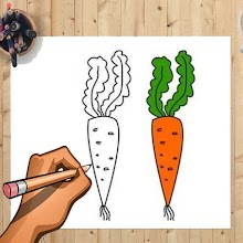 How to Draw Carrot And Other Vegetables Easily APK
