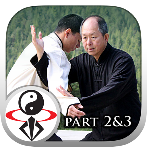Yang Tai Chi for Beginners 2&3 icon