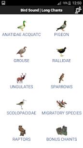 Bird Sound Free 1