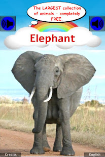 100 ANIMAL SOUNDS & PICTURES: GAMES FOR TODDLERS