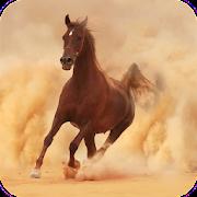 Horse Wallpaper Best HD