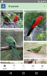 Australian Birds Guide