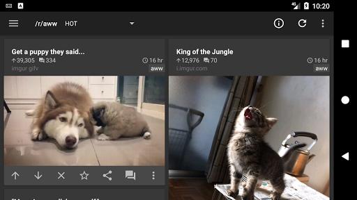 rif is fun golden platinum for Reddit android2mod screenshots 6