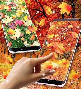 Fall season live wallpaper App Download For Pc (Windows/mac Os) 1