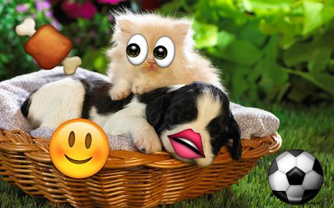Descargar editor de fotos con emojis Para PC ✔️ (Windows 10/8/7 o Mac) 5
