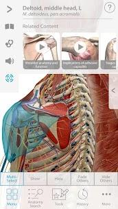 Muscle Premium – Human Anatomy, Kinesiology, Bones Apk 3