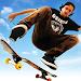 Skateboard Party 3 Icon
