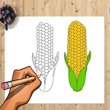 How to Draw Corn And Other Vegetables Step by Step APK
