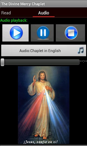 Divine Mercy Chaplet 6.2 Screenshots 2