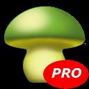 MushToolPro - Gombapatkák