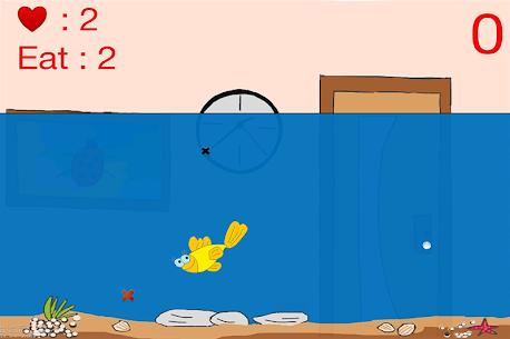 Deneme Racy Hungry FishFree son deneme 20224 4