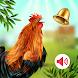 動物の鳴き声 着信音 - Androidアプリ