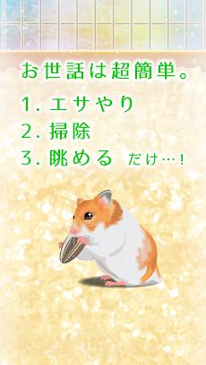 癒しのハムスター育成ゲームのおすすめ画像2