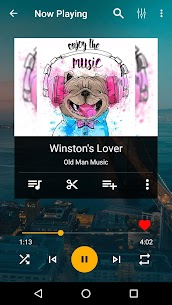 JukeBox Music Player Pro v3.4.16 Cracked APK 3