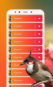 Best Bird Sounds, Calls & Ringtones 2