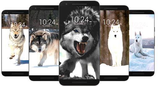 Wolf Wallpaper HD 13 Screenshots 7