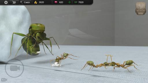 Ant Sim Tycoon 1.5.7 screenshots 7