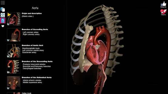 Anatomy Learning - 3D Anatomy Atlas Screenshot