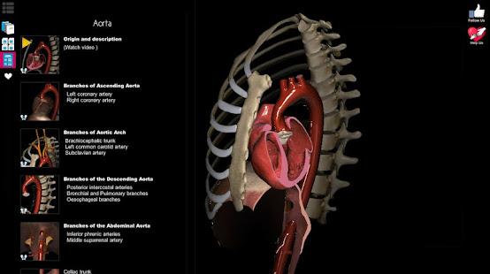 Anatomy Learning - 3D Anatomy Atlas 2.1.329 Screenshots 11