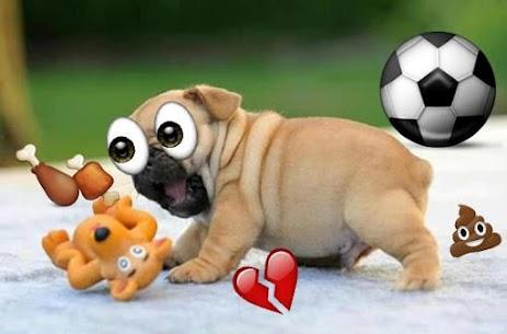 Descargar editor de fotos con emojis Para PC ✔️ (Windows 10/8/7 o Mac) 2