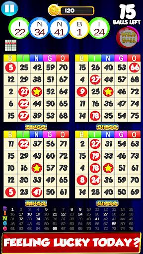Bingo: Cards Game Vegas and Casino Feel  screenshots 1