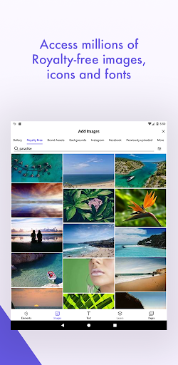 Desygner: Free Graphic Design Maker & Editor android2mod screenshots 13