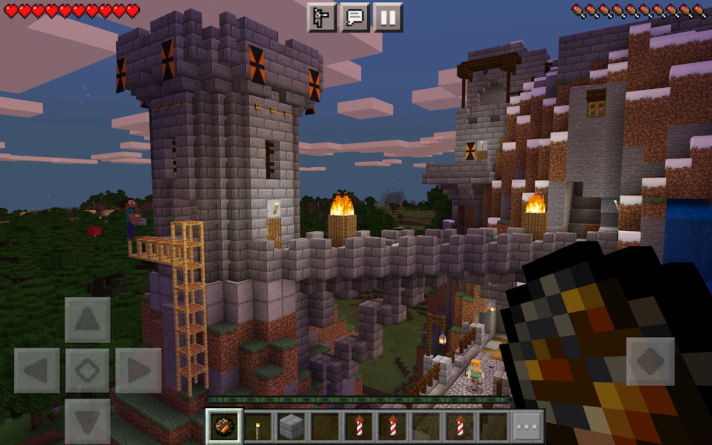 Minecraft  poster 11