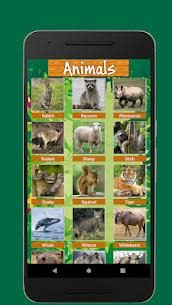 100 Animals and Birds Sound 4