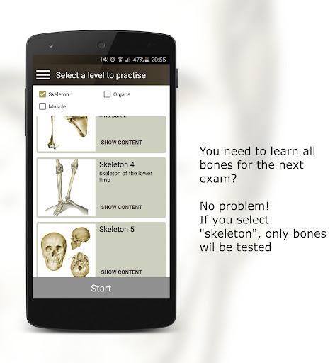 Anatomy Quiz  Screenshots 6