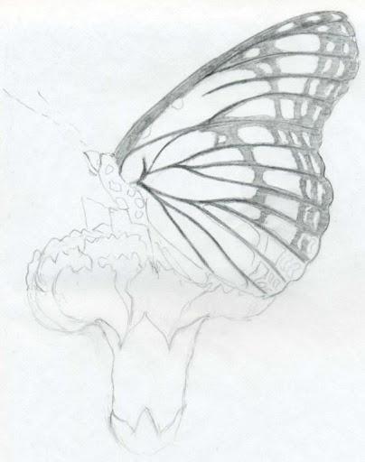Easy Pencil Drawing Ideas 4.0 Screenshots 7