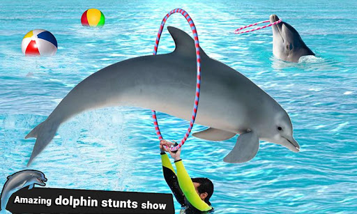 Dolphin Water Stunts Show  screenshots 2