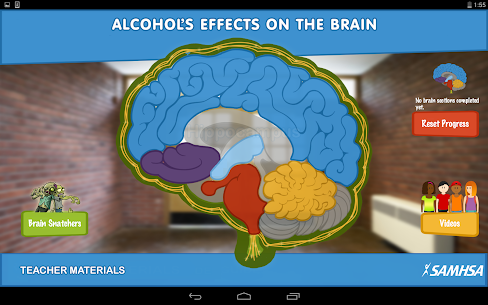 Alcohol's Effects on the Brain 3