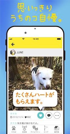ドコノコ - いぬねこ写真アプリのおすすめ画像2