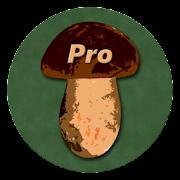 Book of Mushrooms PRO  Icon