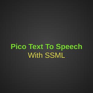 Text To Speech Pico 1