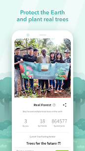 Forest (MOD, Premium) v4.35.0 6