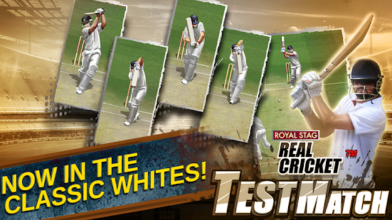 Real Cricket™ Test Match 1.0.7 screenshots 3