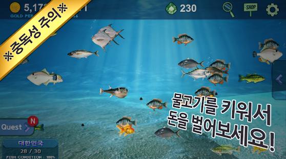 Fish Taming