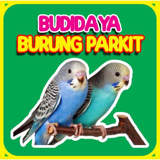 Budidaya Burung Parkit Apps En Google Play