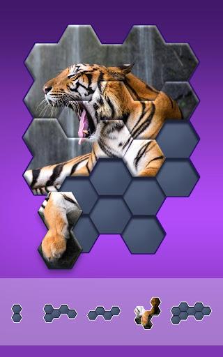 Hexa Jigsaw Puzzle u00ae 44.01 screenshots 6