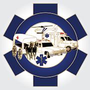 EMS History  Icon