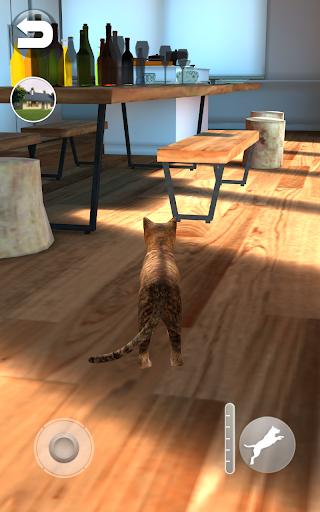 Talking Somali Cat 1.0.6 screenshots 7
