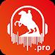Аудиогид по Санкт-Петербургу! 500 Аудиогидов!