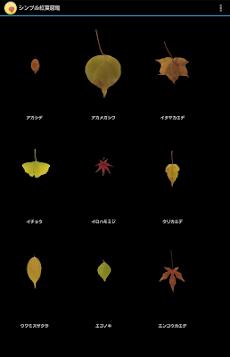 シンプル紅葉図鑑のおすすめ画像4