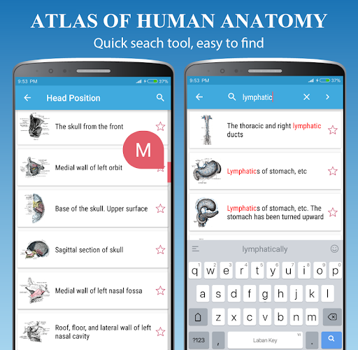 Human Anatomy Atlas - Anatomy Learning 2021  Screenshots 3