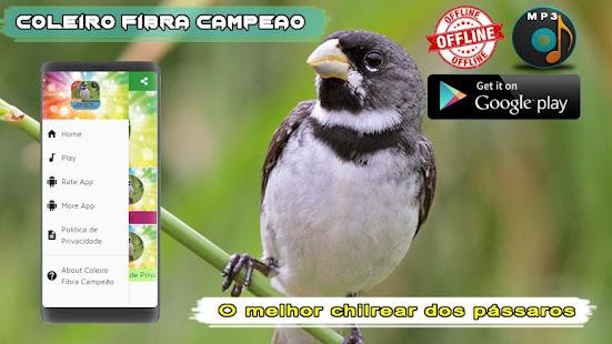 Coleiro Fibra Campeao 1.2 screenshots 1