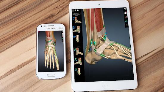 Anatomy Learning - 3D Anatomy Atlas 2.1.329 Screenshots 7