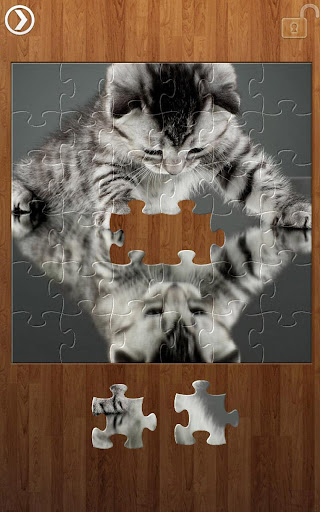 Reflection Jigsaw Puzzles 1.9.17 screenshots 6