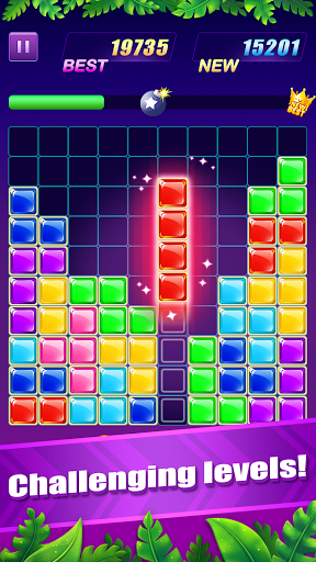 Jewel Puzzle - Block Puzzle, Free Puzzle Game screenshots 4